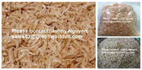 Dried Shrimp - Hot dried speciality from Viet Nam