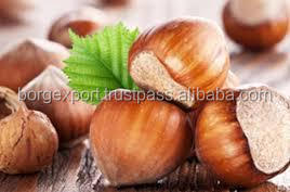 100% Natural Hazelnut Oil