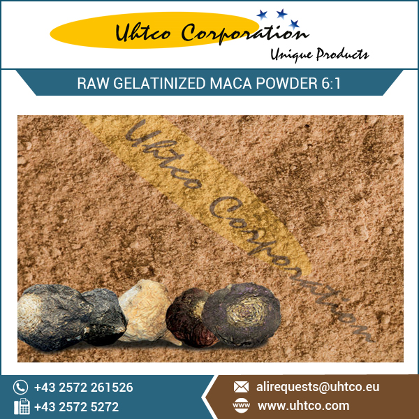 MacaPro Raw Gelatinized Maca Powder 6:1 - >20% Dietary Fibre Content