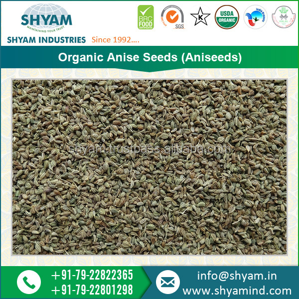 High Grade Organic Aniseeds at Lower Price for Sale