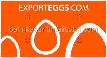 BROWN Chicken Shell Eggs [100% EU] for Angola - USD 28,99/360eggs
