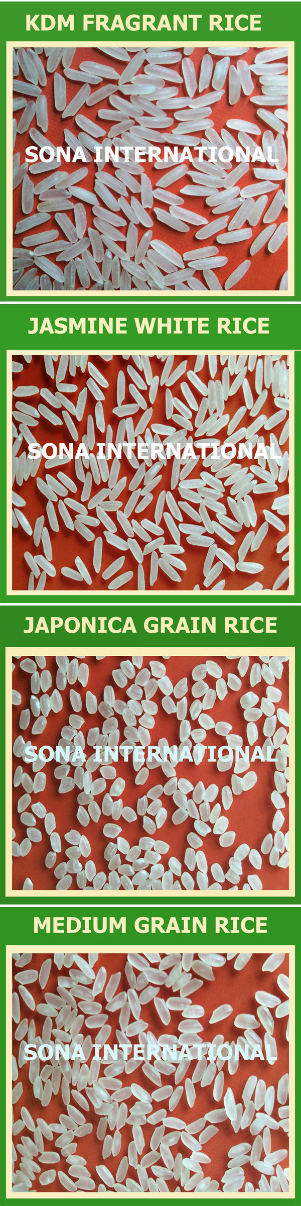 JASMINE RICE - WWW.VINARICE.VN HIGH QUALITY