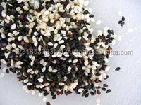 Sesame Seeds Export Quality