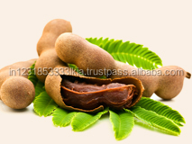 First Quality Tamarind for Export