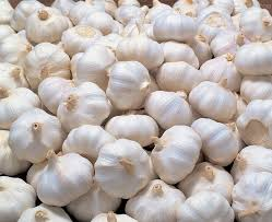 Fresh Pure White Garlic 2017 crop
