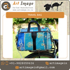 Beautiful Colour Combination Durable Travel Bag from Leading Manufacturer