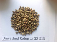 VIETNAM COFFE BEANS - BULK GREEN COFFEE BEANS - ROBUSTA G1-SCREEN 18,16