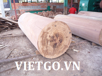 Good quality Keruing wood into logs from Vietnam supplier