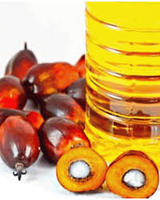 Refined Palm Oil - Olein CP10, CP8, CP6 - GOOD PRICES