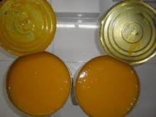 tin packed mango pulp for sale
