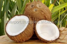 Fresh matured Coco Nuts