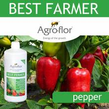 Liquid NPK fertilizer for pepper