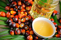 A Grade Pure Refined Palm Oil (RPO)/ Red Palm Oil (RPO)