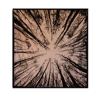 Tree tapestry wall hangings, room decor, wall art