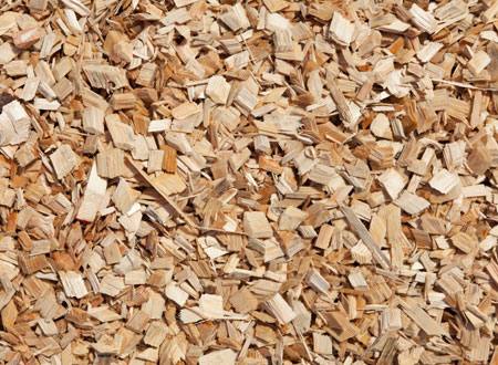 Wood chips, Pine Wood Chips,Pine and Beech Wood Chips