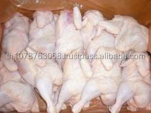 CHICKEN QUARTER LEGS AND WHOLE HALAL FROZEN CHICKEN FOR SALE