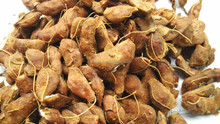 tamarind exporter in india