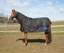 Waterproof Warm Ripstop Outdoor Horse Rug