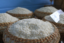 VIETNAM LONG/MEDIUM/SHORT/ROUND GRAIN WHITE RICE,JASMINE RICE,HOM MALI RICE