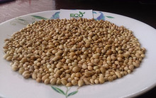 Sell coriander seeds export coriander price competitive producer