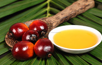 Refined Palm Oil Crude Palm Oil Malaysia and Indonesia FOR SALE