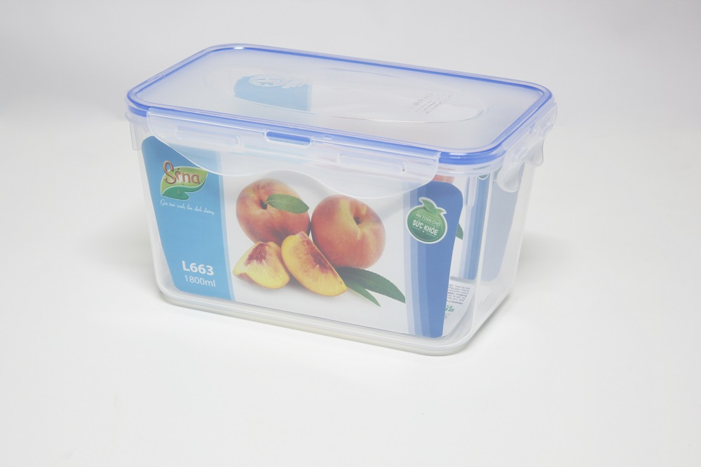 1800ml rectangular plastic food container with lids_DAI DONG TIEN CORPORATION