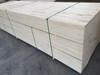 LVL PLYWOOD PRICE / LVL PLYWOOD FOR PACKING