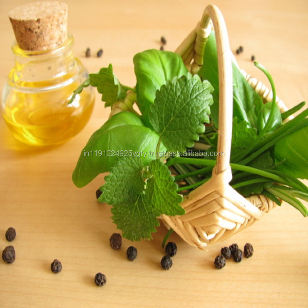 Basil Oil Bulk Wholesale Natural Essential Oil