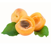Dried Prune,Apple Rings,Prunes,Apricots,Dried Fruit