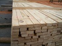 Big Producer of Timber Wood from Thailand