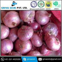 High Quality Nasik Onion for sell