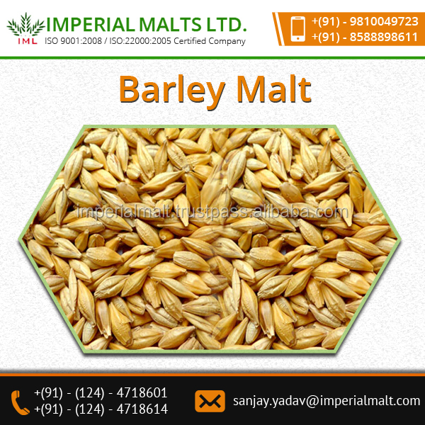 Precisely Processed,Delicious Taste Barley Malt Available In Air Tight Packing