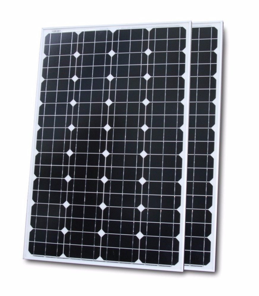 100w Mono Solar Panel for 12v/24v/48v Charging (Set of 2)