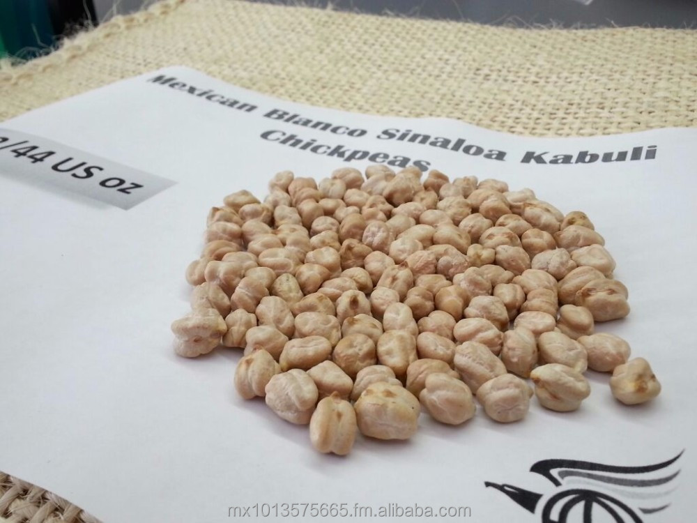 Mexican Kabuli Blanco Sinaloa Chickpeas 44/46 us oz