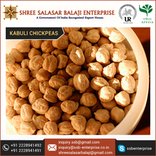 Indian Kabuli Chickpeas Wholesale Supplier Price