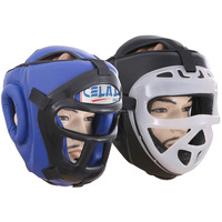 Head Guard with Protector,Shin Guard with Instep,Head Guard