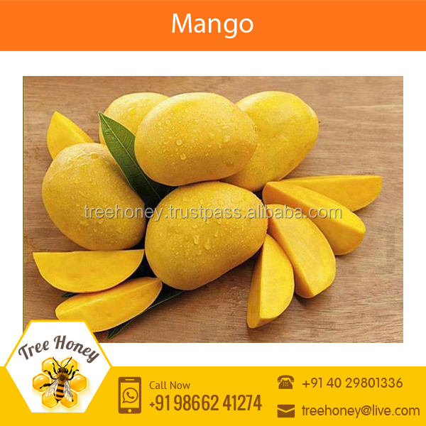 Fresh Mango with Good Taste Available at Competitive Price