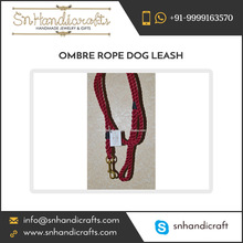 Ombre Rope Dog Leash and Collar Nylon Braided Dog Leash Name Brand Dog Collars And Leashes