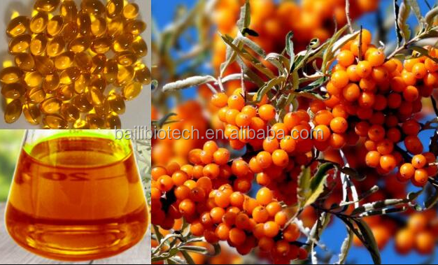 Alibaba100% pure best price Sea buckthorn seed oil good for your health