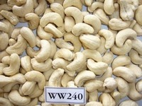 high quality good for health white raw Cashew Nut for Best Price