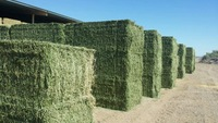 alfalfa hay bales for sale,hay bales for horses,wheat straw hay bales for sale