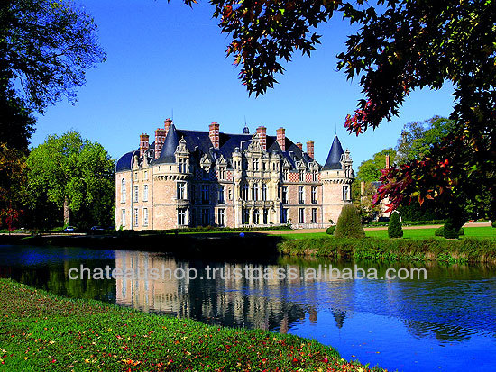 CHATEAUX,WINERIES,VILLAS, HOTELS FOR SALE IN FRANCE - FABULOUS DEALS AVAILABLE!!!