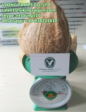 SEMI HUSKED MATURED COCONUT FROM VIETNAM