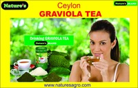 GRAVIOLA TEA & POWDER from SRI LANKA