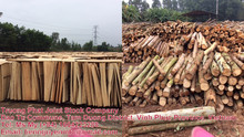 Vietnam First-Class Grade construction plywood, Outdoor Usage Plywood