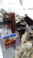 High grade Oud or Agarwood oil price-best dealing for long term business-100% pure Oud materials