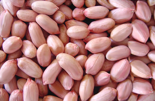2016 New Products Peanuts importers in uae 1Kg Price