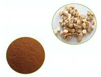 Honson Ingredient: Natural Herbal Extract Powder Isatis Root Extract