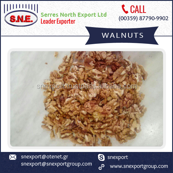Vitamins Rich Low Price New Walnuts from Trustworthy Trader