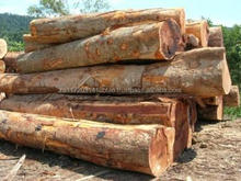 Bubinga,Sapelle,Iroko,Mahogany,Mangosy,Wenge,Ebony LOGS For Sale